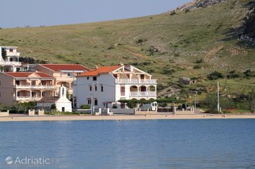 Property Metajna (Pag) - Accommodation 6497 - Apartments near sea with sandy beach.