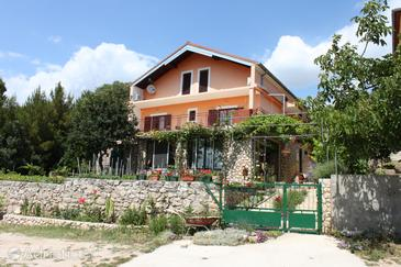 Property Maslenica (Novigrad) - Accommodation 6570 - Apartments near sea with pebble beach.