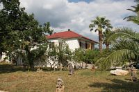 Apartments by the sea Starigrad (Paklenica) - 6586