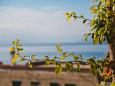 Balcony 2 - view - Apartment A-6646-a - Apartments Podgora (Makarska) - 6646