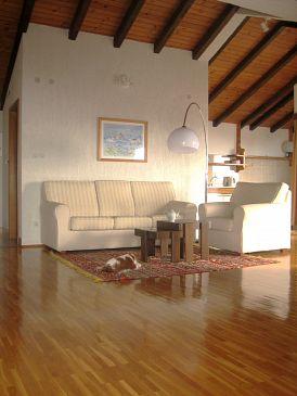 Apartment A-6664-d - Apartments Podgora (Makarska) - 6664