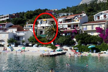 Property Podgora (Makarska) - Accommodation 6670 - Apartments near sea with pebble beach.