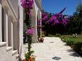 Courtyard Podaca (Makarska) - Accommodation 6736 - Apartments with pebble beach.