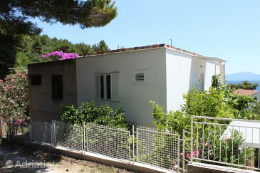 Property Zaostrog (Makarska) - Accommodation 6822 - Apartments near sea with pebble beach.