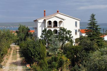Property Neviđane (Pašman) - Accommodation 684 - Apartments with pebble beach.