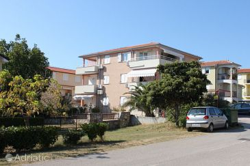 Novigrad, Novigrad, Property 6936 - Apartments with pebble beach.