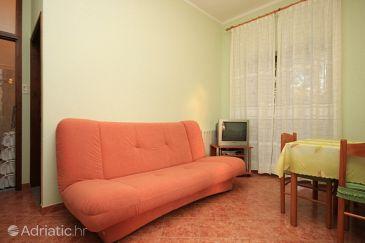 Apartment A-6964-a - Apartments Novigrad (Novigrad) - 6964