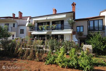 Property Valbandon (Fažana) - Accommodation 7239 - Apartments with pebble beach.