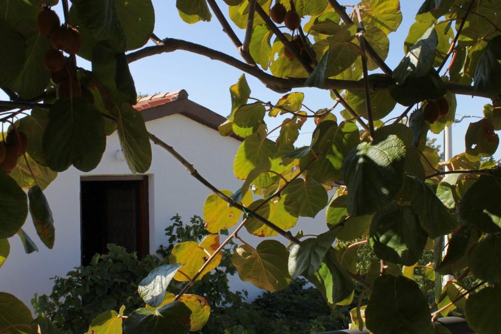 Apartmány s parkoviskom v meste Krnica - 7358