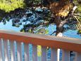 Balcony - view - Studio flat AS-7531-b - Apartments Sobra (Mljet) - 7531