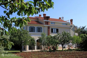 Property Vabriga (Poreč) - Accommodation 7627 - Apartments with pebble beach.