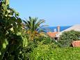 Shared terrace - view - Apartment A-7948-a - Apartments Mali Lošinj (Lošinj) - 7948