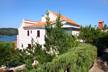 Property Tisno (Murter) - Accommodation 808 - Apartments near sea.