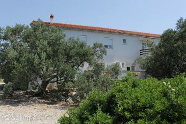 Property Božava (Dugi otok) - Accommodation 8123 - Apartments in Croatia.