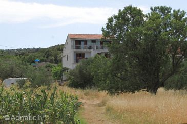 Property Tkon (Pašman) - Accommodation 8218 - Apartments near sea with rocky beach.