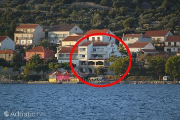 Property Tkon (Pašman) - Accommodation 8300 - Apartments and Rooms near sea.