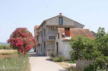 Property Dobropoljana (Pašman) - Accommodation 8309 - Apartments and Rooms near sea with sandy beach.