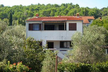 Property Ždrelac (Pašman) - Accommodation 8396 - Apartments in Croatia.