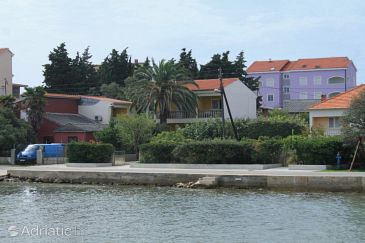 Property Ugljan (Ugljan) - Accommodation 8508 - Apartments near sea with sandy beach.
