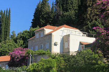 Slano, Dubrovnik, Property 8567 - Apartments with pebble beach.