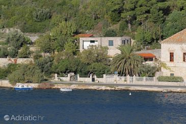 Property Mokošica (Dubrovnik) - Accommodation 8588 - Vacation Rentals near sea.