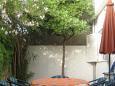 Terrace 1 - view - Apartment A-8736-a - Apartments Bol (Brač) - 8736