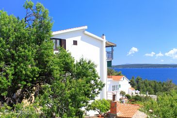 Property Zavala (Hvar) - Accommodation 8784 - Apartments and Rooms near sea with pebble beach.