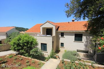 Property Cavtat (Dubrovnik) - Accommodation 8827 - Apartments near sea.