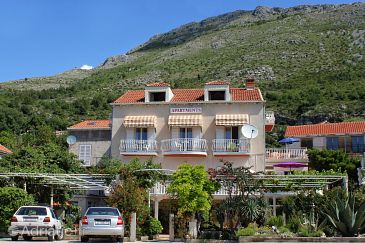 Property Mlini (Dubrovnik) - Accommodation 8835 - Apartments and Rooms with pebble beach.