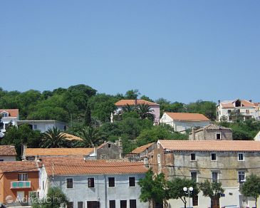 Property Sali (Dugi otok) - Accommodation 886 - Apartments in Croatia.