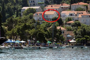 Property Cavtat (Dubrovnik) - Accommodation 8981 - Apartments and Rooms near sea.