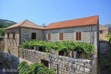 Property Slano (Dubrovnik) - Accommodation 9013 - Apartments near sea with pebble beach.