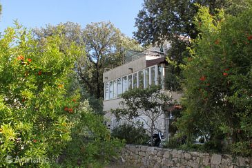 Property Zaton Veliki (Dubrovnik) - Accommodation 9054 - Apartments near sea.