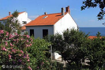 Property Dubrovnik (Dubrovnik) - Accommodation 9083 - Apartments with pebble beach.