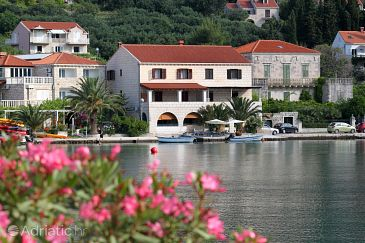 Property Zaton Mali (Dubrovnik) - Accommodation 9087 - Apartments and Rooms near sea.