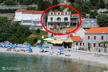 Property Štikovica (Dubrovnik) - Accommodation 9110 - Apartments near sea with pebble beach.