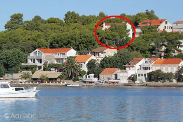 Property Lumbarda (Korčula) - Accommodation 9304 - Apartments near sea.