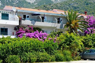 Property Drvenik Donja vala (Makarska) - Accommodation 9654 - Apartments near sea with pebble beach.