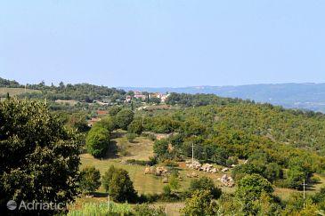 Rakotule u rivijeri Središnja Istra (Istra)