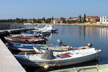 Zambratija u rivijeri Umag (Istra)