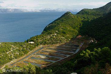 Kozarica on the island Mljet (Južna Dalmacija)