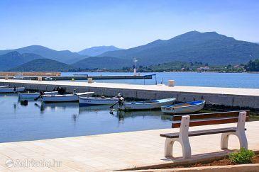 Drače u rivijeri Pelješac (Južna Dalmacija)