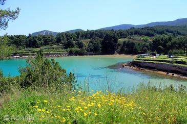 Uvala Grebišće on the island Hvar (Srednja Dalmacija)